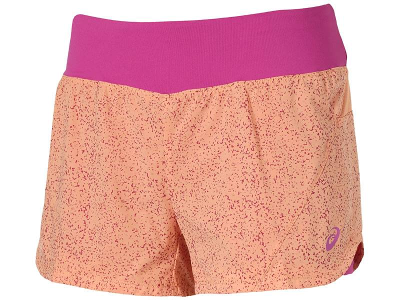 Asics 2 in 1 Shorts