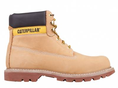Caterpillar Colorado (Damen)