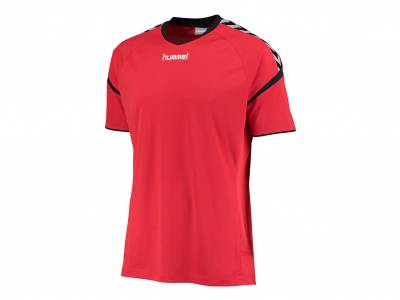 hummel Auth. Charge SS Poly Jersey (Herren)