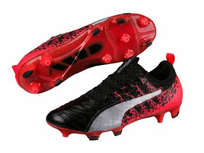 Puma evoPOWER Vigor 1 L Graphic FG