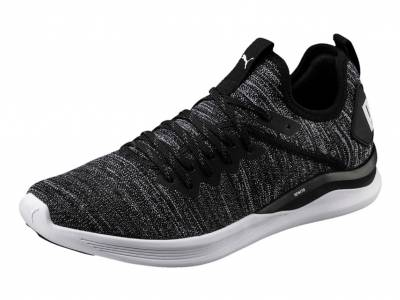 Puma IGNITE Flash evoKNIT (Herren)