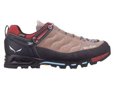 Salewa Mountain Trainer GTX (Damen)