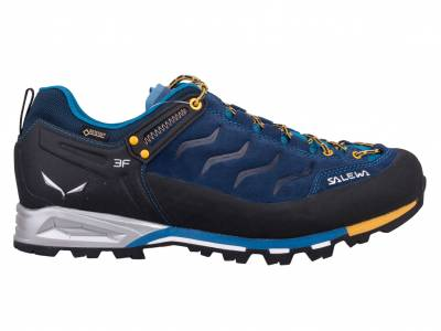Salewa Mountain Trainer GTX (Herren)