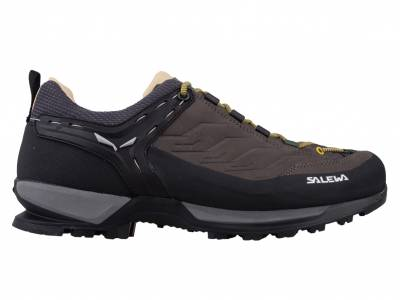 Salewa Mountain Trainer L (Herren)