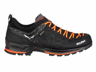Salewa MS MTN Trainer 2 GTX (Herren)