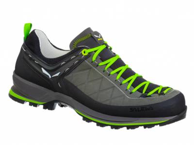 Salewa MS MTN Trainer 2l GTX (Herren)