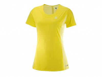 Salomon Agile Heather Tee W (Damen)