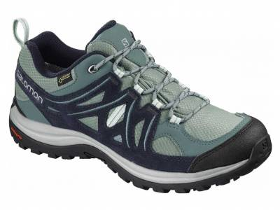 Salomon Ellipse 2 GTX W (Damen)