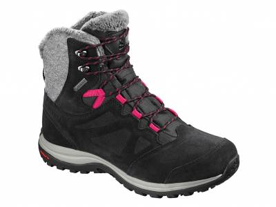 Salomon Ellipse Winter GTX (Damen)