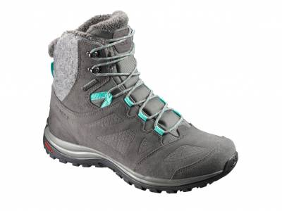 Salomon Ellipse Winter GTX W (Damen)
