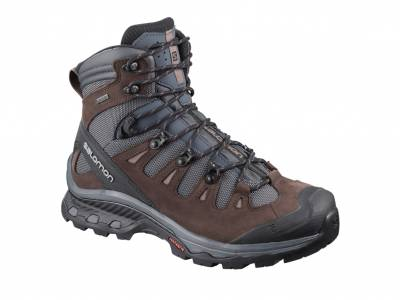 Salomon Quest 4D 3 GTX W (Damen)