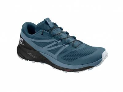 Salomon Sense Ride 2 W (Damen)