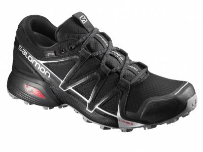 Salomon Speedcross Vario 2 GTX (Herren)