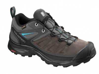 Salomon X Ultra 3 LTR GTX W (Damen)