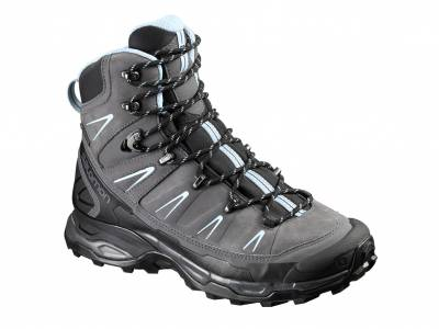 Salomon X Ultra Trek GTX W (Damen)