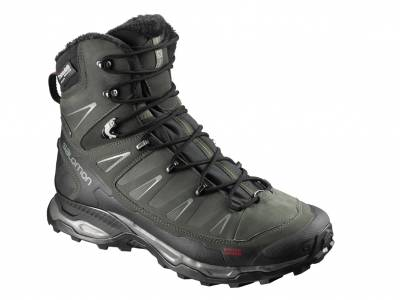 Salomon X Ultra Winter CS WP (Herren)